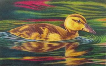 duckling 002